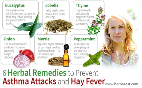 common herbs that cause euphoria picture 14