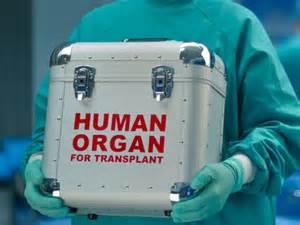 liver transplant center picture 5