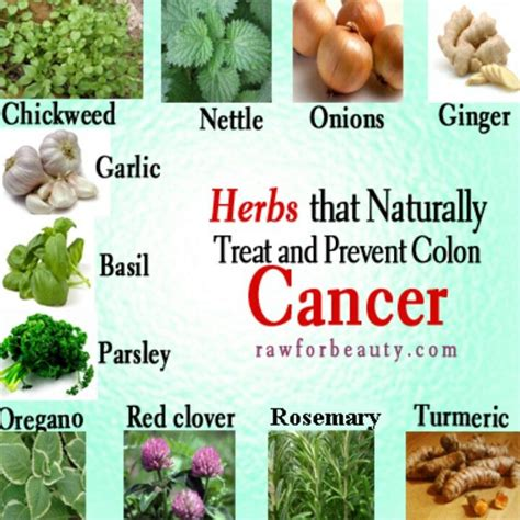 herbal curfor colon cancer picture 5