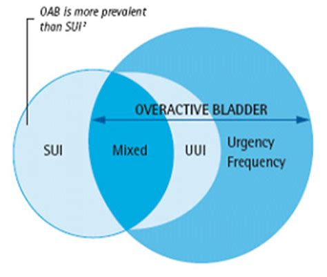 what percent of people have overactive bladder picture 7