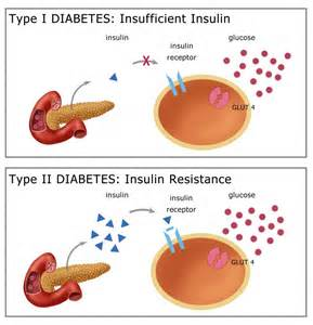 herbal treatment of diabetes mellitus picture 1