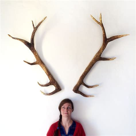 can deer antler cause picture 17