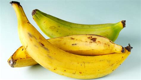 where to buy plantains picture 14