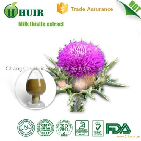 milk thistle help liver disease picture 7