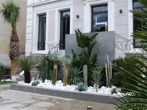 cactus picture 9