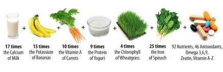 can moringa herbs cure h picture 13