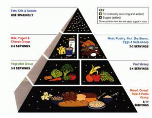 food to eat to lower cholesterol picture 9
