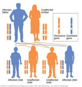 inherited genetic liver disease stats picture 17