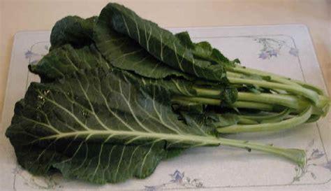 collardgreens diet picture 14