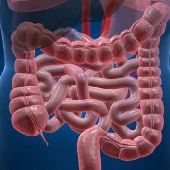 about colon problems for men picture 10