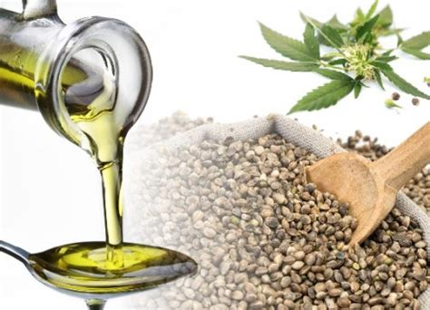 herbal remedy hemp seed oil picture 6