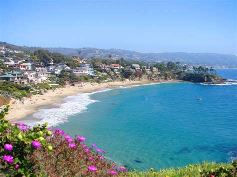 where in orange county california can i buy picture 15