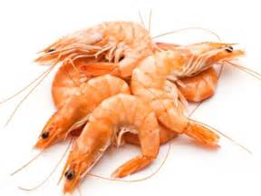 Cholesterol and shrimp picture 3