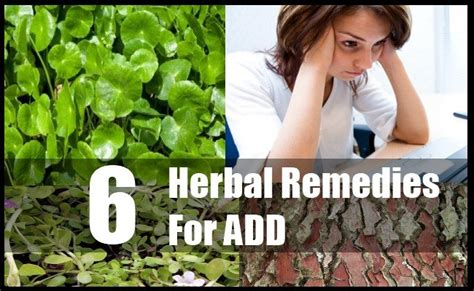 herbal remedies for add picture 5