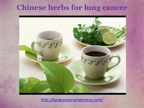 herbs for lung cancer picture 2
