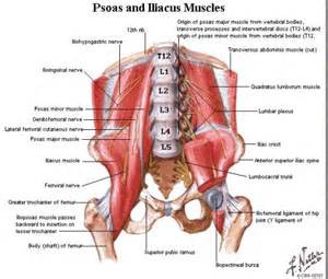 can stress cause gallbladder problems picture 14