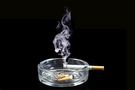 can you get cigar smoke removed from a house picture 11