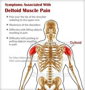 can paxil cause muscle and joint pain picture 17