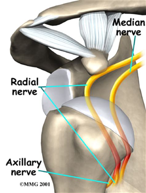 joint and nerve pain picture 13
