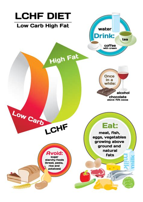 weight loss possible on low carb diet picture 7