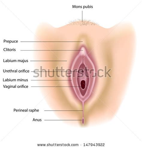 bladder cancer paint picture 5