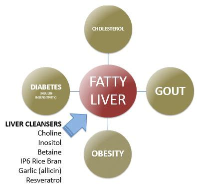 choline for fatty liver picture 1