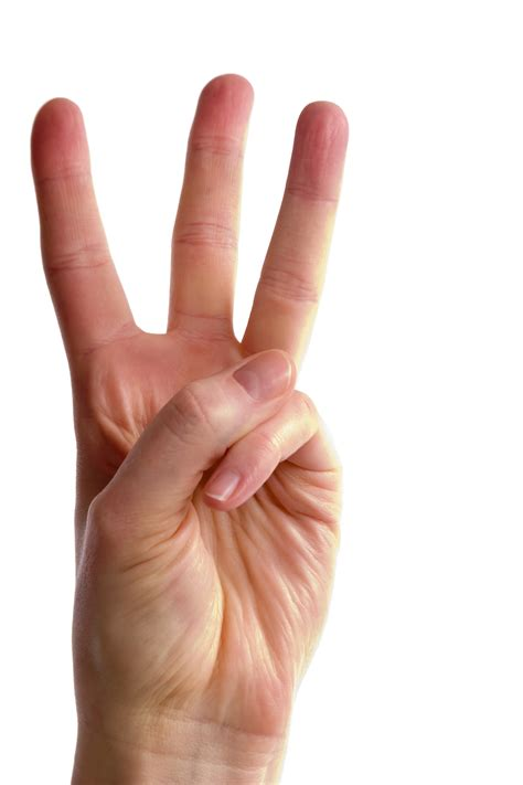 fingers picture 2