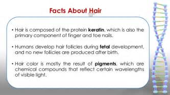 enchantina hair grower information picture 13