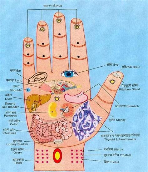 acupressure points for treating pelvic pain spasms? picture 3