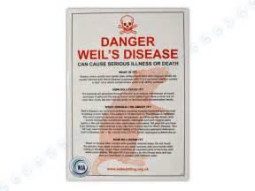 what is le cerbvas disease picture 19