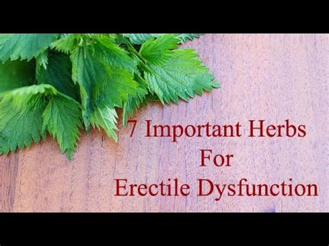 erectile dysfunction herb picture 7