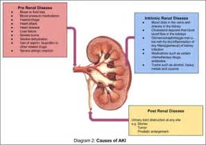 can kidney failure cause yellow skin picture 13