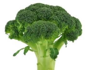 b vitamin cholesterol picture 7