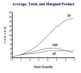 total product curve graph picture 5