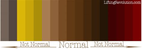 what color is blood from bowel picture 6