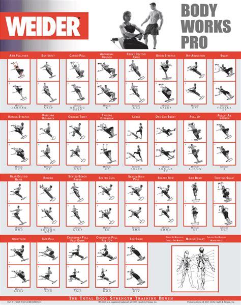 power precision bodybuilding picture 6