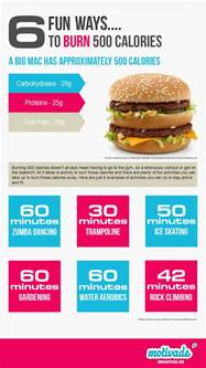 2013 eight hour fat burning suppliments picture 7