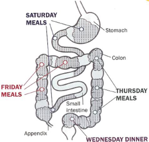 average bowel transit time picture 14
