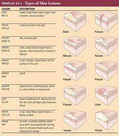medical dictionary skin disorders picture 7