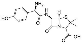 amoxillin and h picture 3