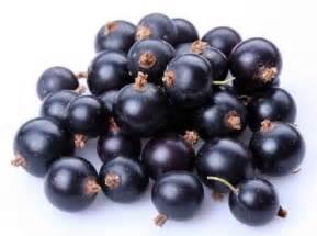 kandungan acai berry picture 7