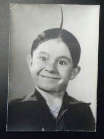 alfalfa and y sings just an echo in picture 9
