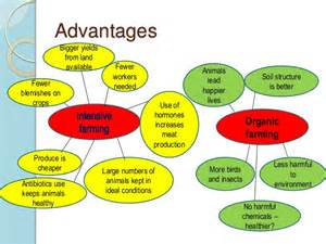 advantages disadvantages of herbal products for medicine picture 3