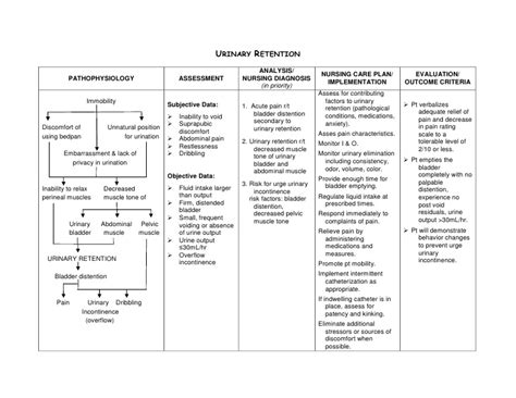 nursing care plan for urinary retention picture 2