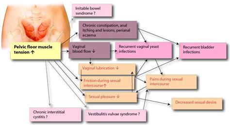 exercises for erectile dysfunction men picture 7