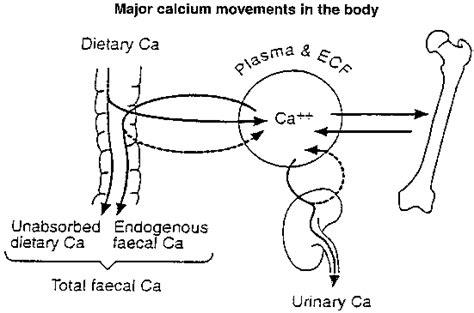 calcium loss in h picture 13
