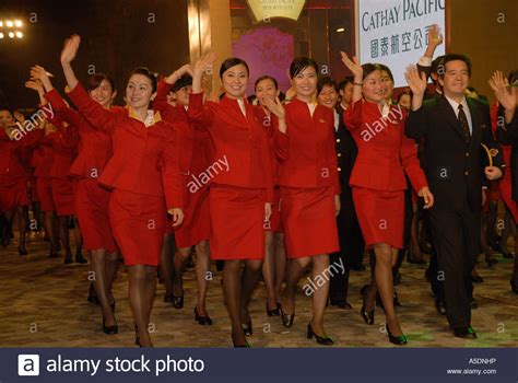 flight attendants taking gordonii picture 6