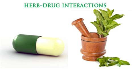 herbal interactions picture 5