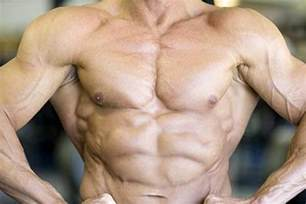 chest muscle at picture 15