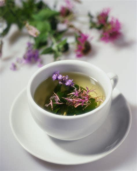 herbal tea picture 6